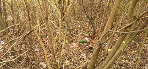 Szentgotthárd-Rábatótfalu patakmenti hulladéka