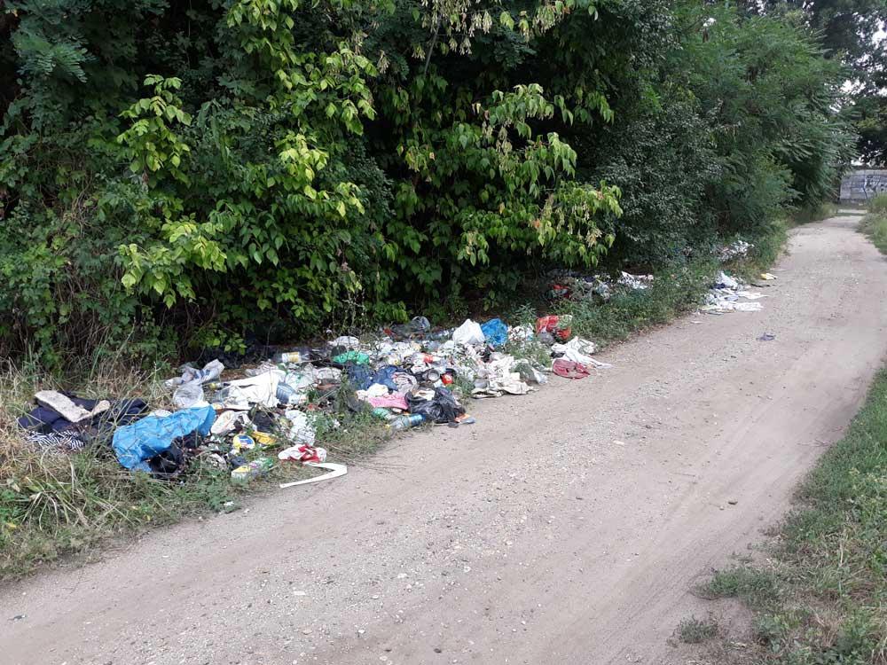 Kommunális hulladékok szanaszét a bozótban. / Fotó: hulladekvadasz.hu