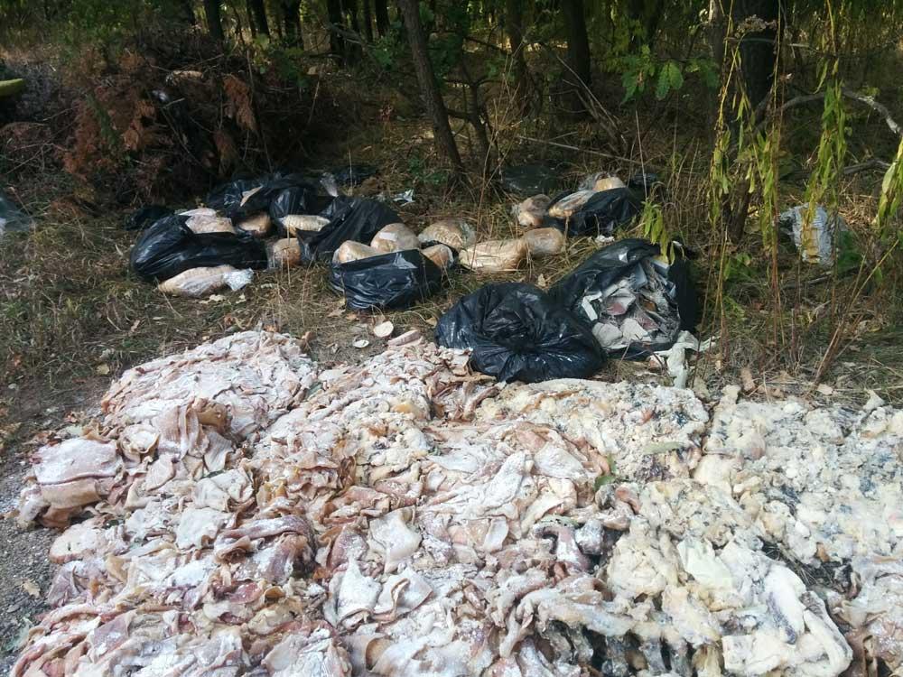 Több száz kilónyi szalonnabőr is lehet a helyszínen. / Fotó: hulladekvadasz.hu