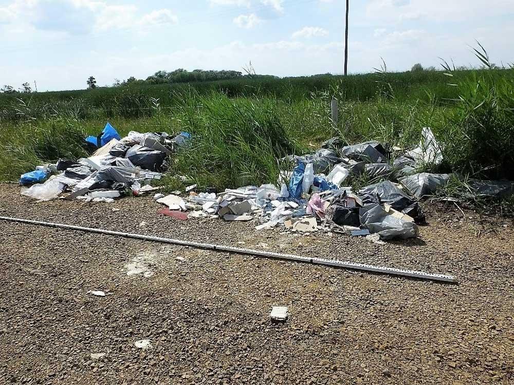 Szégyen és gyalázat, aki ilyet csinál megérdemli a kőkemény büntetést. / Fotó: police.hu