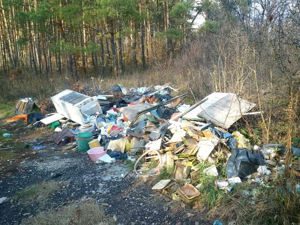 Isaszegen lassan több a hulladék az erdőben, mint állat