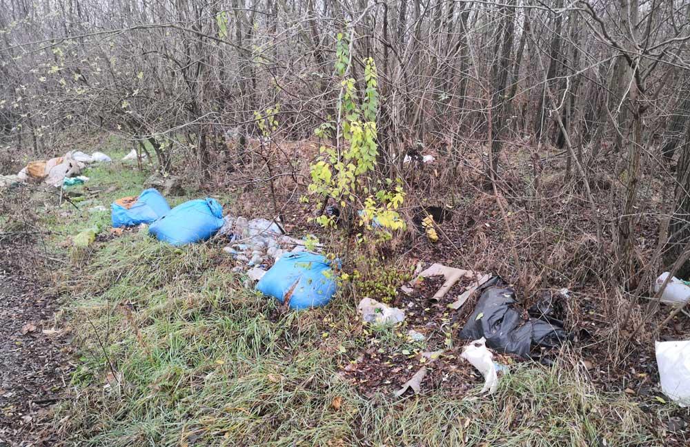 Szedres hulladékkal szennyezett erdője