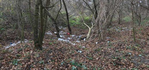 Tokod határában szétszórt hulladék