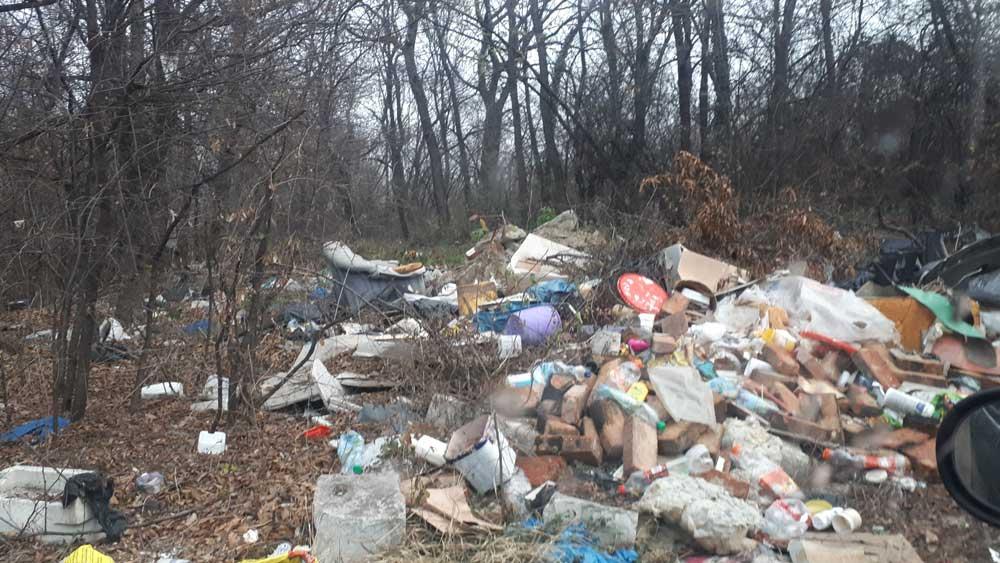 Építési hulladék, kanapé, PET-palackok az erdőben.