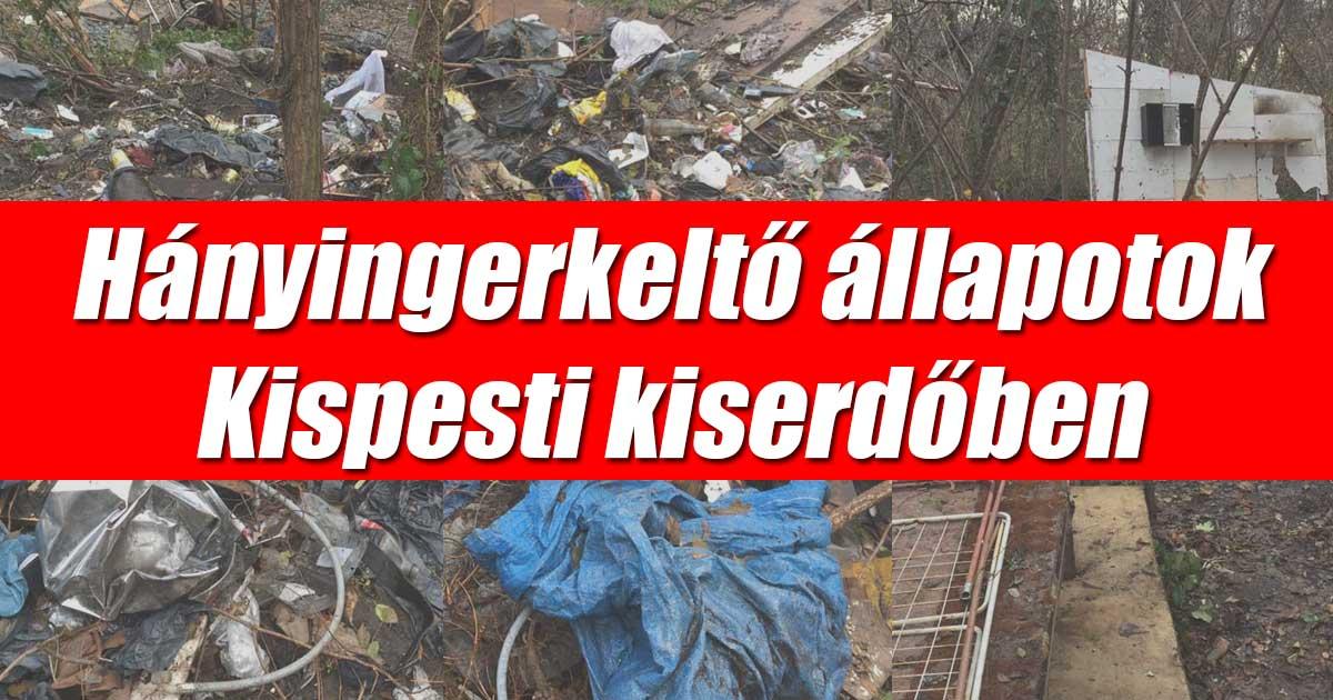 Kispesti kiserdő hányingerkeltő hulladék állapotok