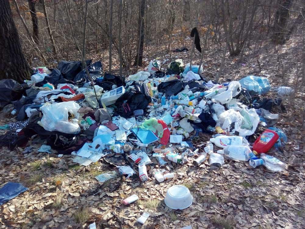 A hulladéklerakat nem rég kerülhetett ki a területre, de jól látható, hogy a vadon élő állatok elkezdték széthordani.