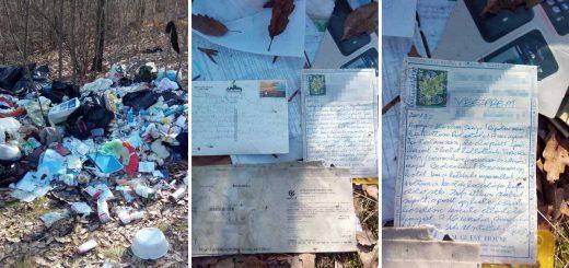 Cseri parkerdő számlákkal teli hulladéklerakata