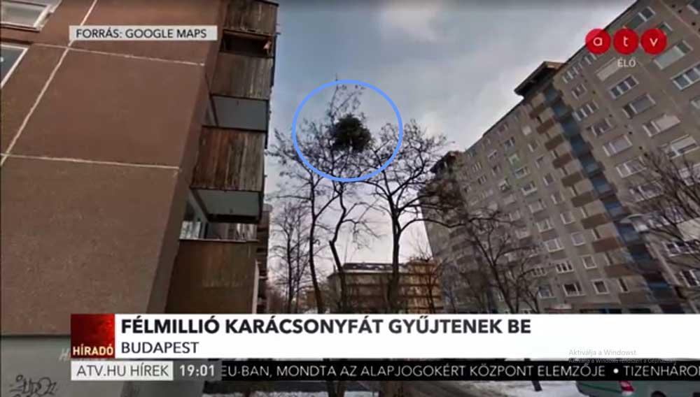 Az ATV Híradójában bemutatót esett még 2012-ben történt. / Forrás: ATV.hu