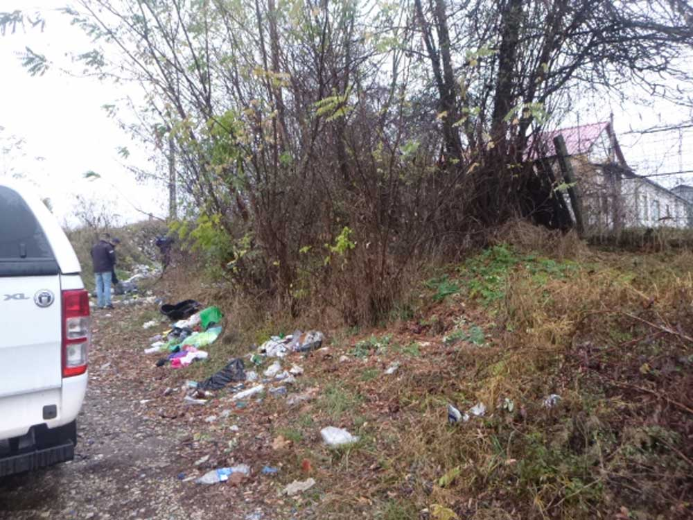 A zöldkommandó helyszínelés közben, Miskolc külterületén. / Fotó: mior.hu