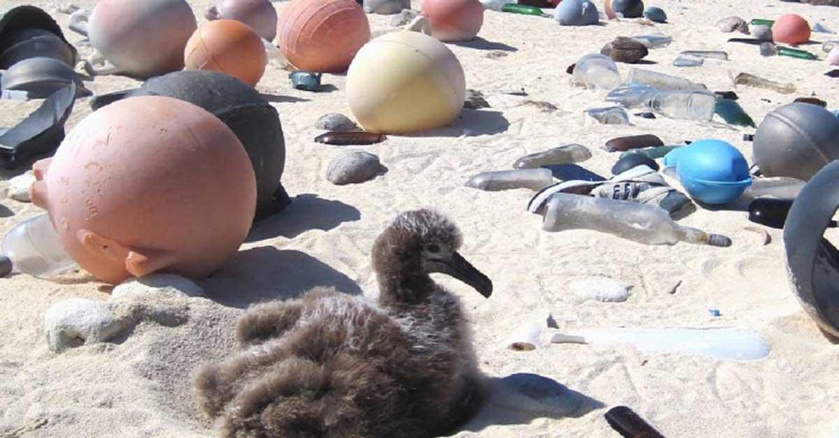 Üzemanyag készíthető az óceáni műanyaghulladékból. / Fotó: Noaa