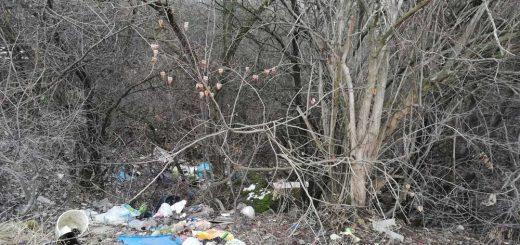 Izabella híd melletti hulladékmező Szegeden