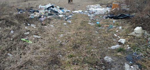Turai legelő Természetvédelmi terület melletti hulladékmező