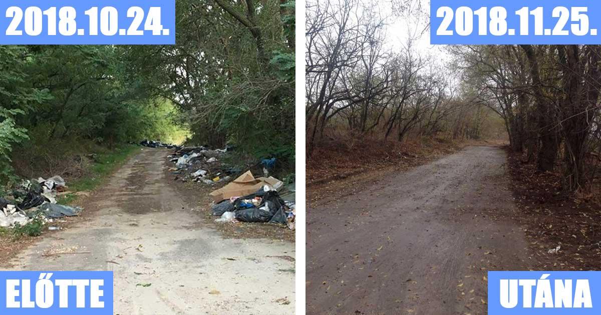 Igazán látványos takarítás történt a közelmúltban Ócsa külterületén a bejelentés hatására.