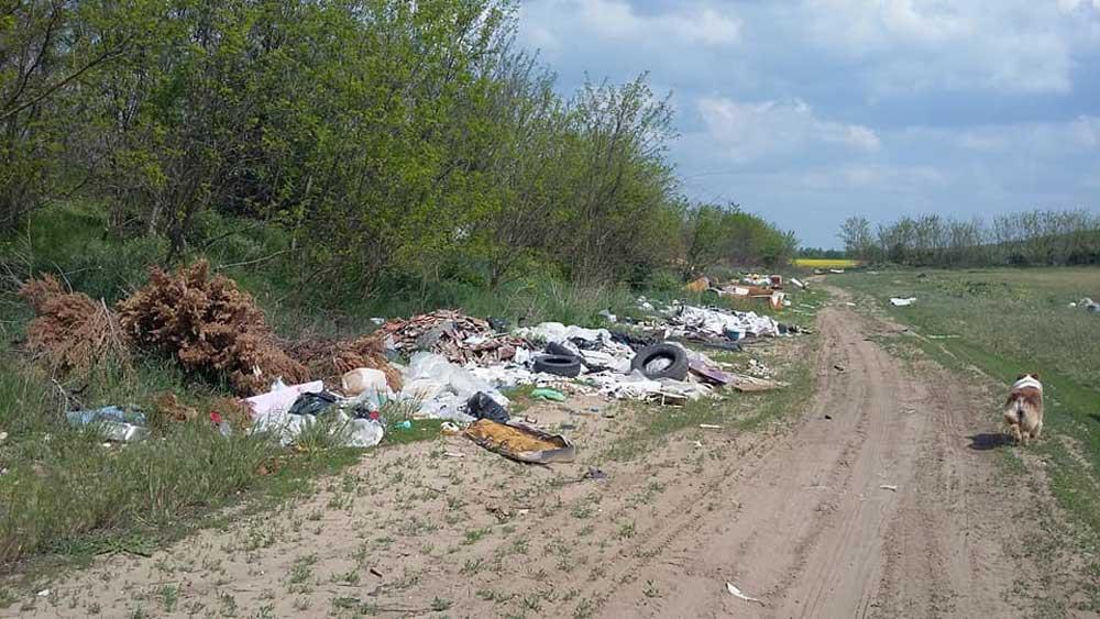 Az illegális hulladéklerakásokra a bejelentő kutyasétáltatás közben bukkant rá.