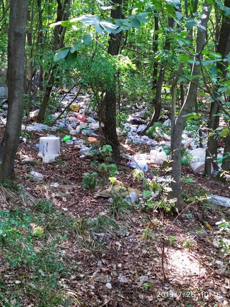 PET palack rengeteg az óbudai Mátyás-hegyen.