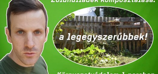 5 legegyszerűbben komposztálható zöldhulladék